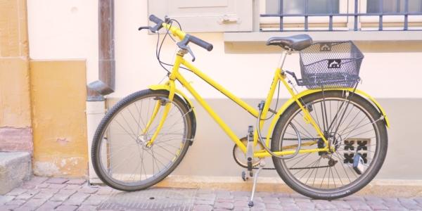 Lütjensee: Fahrradtour nach Grönwohld am 28.08.2019